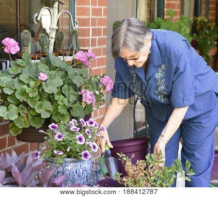 Portrait of an elder woman working at her home garden