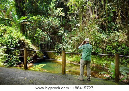 Tourist Admiring Lush Tropical Vegetation Of The Hawaii Tropical Botanical Garden Of Big Island Of H