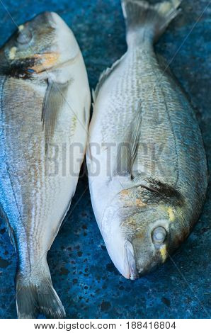 Fresh Two Raw Dorado Fish On A Blue Stone Background. Selective Focus. Overhead View.