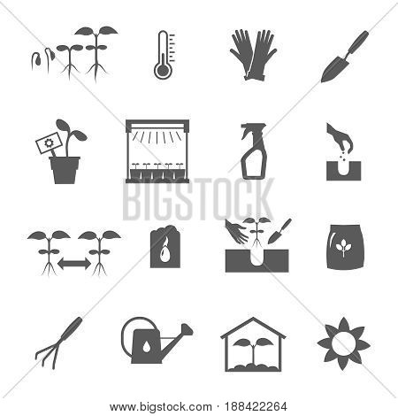 Seedling black and white icons set flat isolated vector illustration