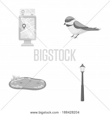 Territory plan, bird, lake, lighting pole. Park set collection icons in monochrome style vector symbol stock illustration .