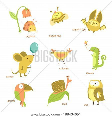 Animals set. Different animals, Insects. Vector illustration.