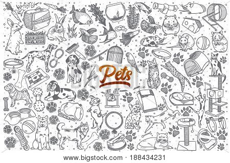 Hand drawn Pets doodle set background with red lettering in vector