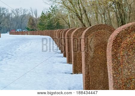 Brown gravestones organised in straight row with snow and trees in background