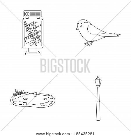 Territory plan, bird, lake, lighting pole. Park set collection icons in outline style vector symbol stock illustration .