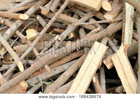 Much Plenty Of Firewood For The Fireplace In A Pile, Lumber From Tamarind Tree.