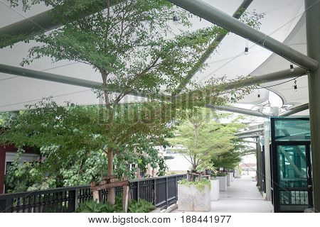 Green Plants On Rooftop Garden stock photo