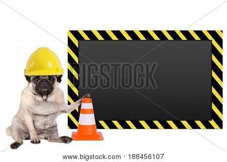 pug dog with yellow construction worker safety helmet and blank warning sign isolated on white background