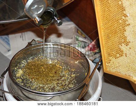 extracting honey honey flowing out of a centrifuge into a sieve honeycomb in the background