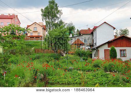 Picturesque cottages on hills of Carpathians Ukraine
