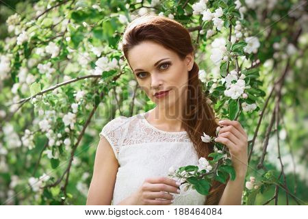 Young Beautiful Woman In Spring Blossom Trees