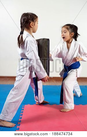Two little girls demonstrate martial arts working together. Fighting position active lifestyle practicing fighting techniques