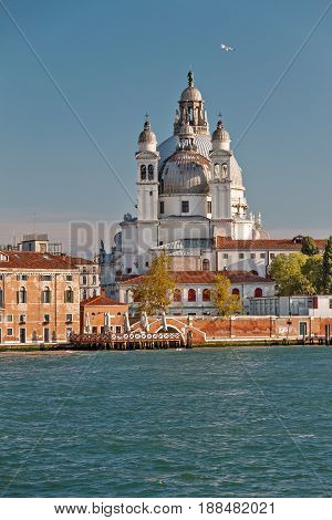 Cathedral in Venice, Santa Maria della Salute and ancient houses on a summer day