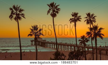 Palm trees on Manhattan Beach and Pier at sunset in California, Los Angeles, USA.