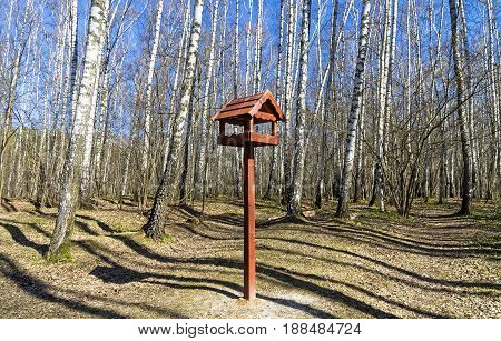Wooden Bird Feeder In The Birch Forest.