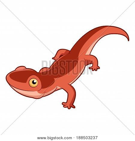 Vector image of the Cartoon smiling Newt