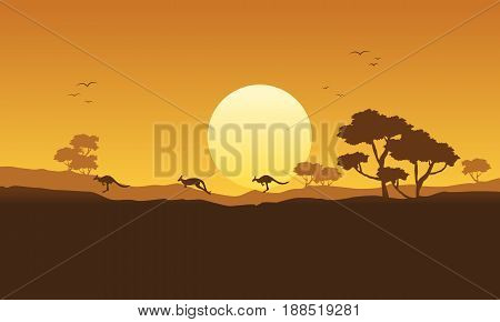 Illustration vector kangaroo scenery silhouette collection stock