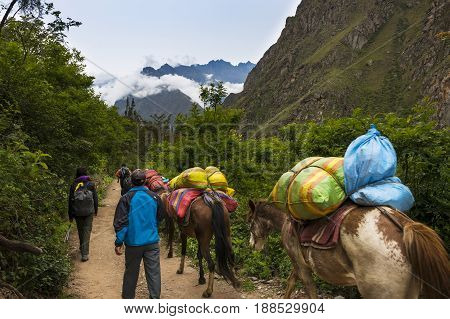 Sacred Valley Peru - January 1 2014: People and horses carrying goods along the Inca Trail in the Sacred Valley Peru