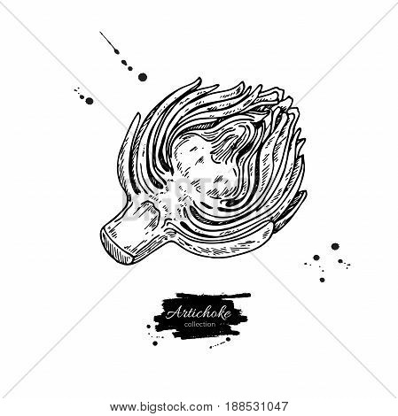 Artichoke hand drawn vector illustration. Isolated Vegetable engraved style object. Detailed vegetarian food drawing. Farm market product. Great for menu, label, icon
