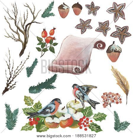 Watercolor Papyrus and birds for different occasions.
