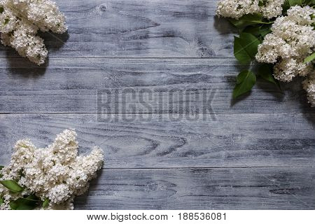 White lilac lies on a wooden background