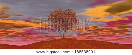 Single autumn tree by cloudy sunset - 3D render