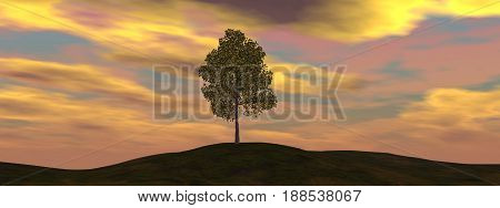 Single tree by beautiful sunset - 3D render