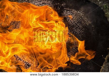 The tongues of flame burst from the burning log in the fire. A charred wooden surface is visible. Background. Texture.