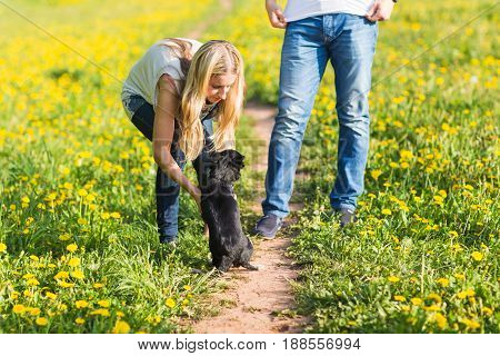 Girl playing with small dog on grass.