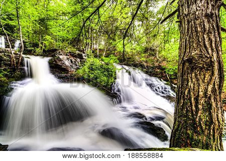 Multiple water falls from spring rain with tree in foreground