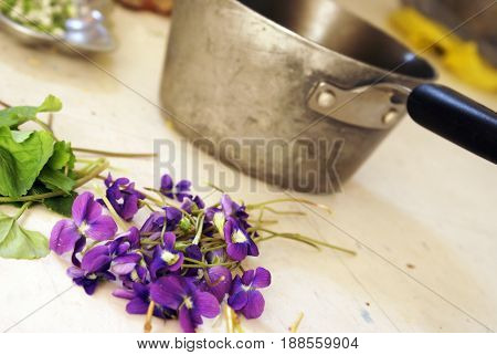 A closeup view of some fresh picked Dwarf Iris being prepared for herbal uses.