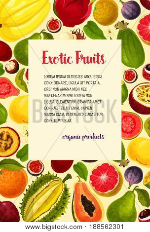 Exotic fruits poster of tropical avocado, guava and carambola, fresh organic mangosteen or passionfruit, mango or figs. Vector harvest of natural and juicy dragon fruit, tropical feijoa and orange