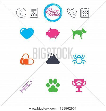 Information, report and calendar signs. Veterinary, pets icons. Dog paw, syringe and winner cup signs. Pills, heart and feces symbols. Classic simple flat web icons. Vector