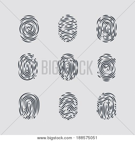 Abstract Types of Fingerprint Patterns for Identity Person Security ID on Gray for Design