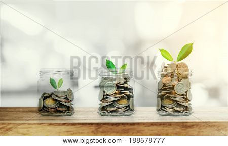 Money growing concepts, bottle of coins with growing plants on wooden table and Bokeh background, with sunlight