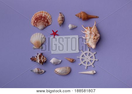 Gift Card And Seashells In Beautiful Composition