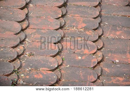 Old red tile covered with greenish rash,