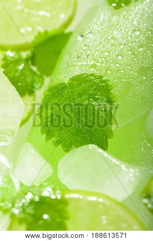A Bottle Of Lemonade With Lime And Mint On Ice