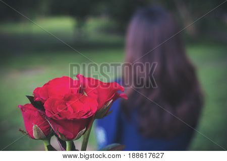 A woman turn back from red color roses flower with nature background
