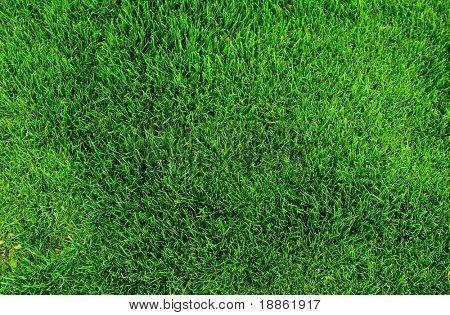 Groen gras patroon tot een voetbal veld bovenaanzicht