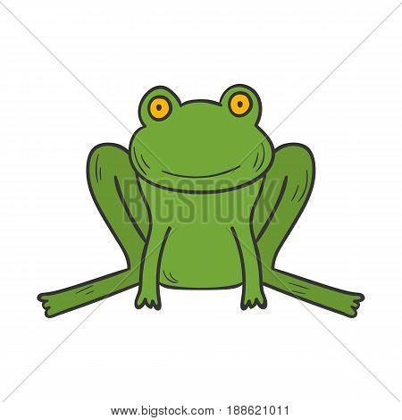 Vector Cartoon Hand Drawn Green Frog