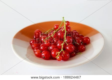 Ripe red currants. A bunch of red currants on a plate. Transparent red berries.