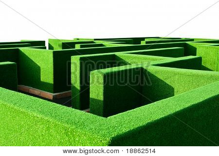 Hedge maze in a park isolated on white