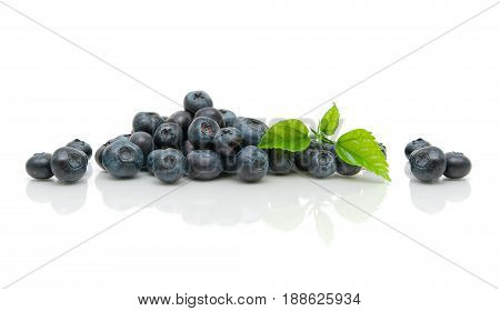 Fresh ripe blueberries and green leaves on a white background with reflection. Horizontal photo.