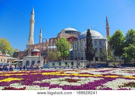 ISTANBUL, TURKEY - APRIL 29, 2017: Hagia Sophia mosque during tulips festival