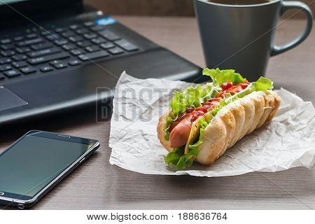 Quick Lunch Of Hotdog