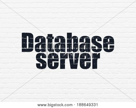 Database concept: Painted black text Database Server on White Brick wall background