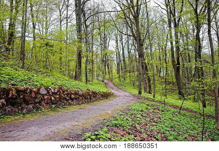 Trailway In Traku Voke Public Park In Vilnius