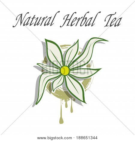 Illustration flower as a symbol of natural herbal tea.