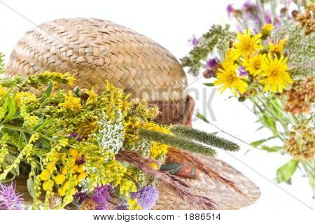 Straw Hat And Field Flowers